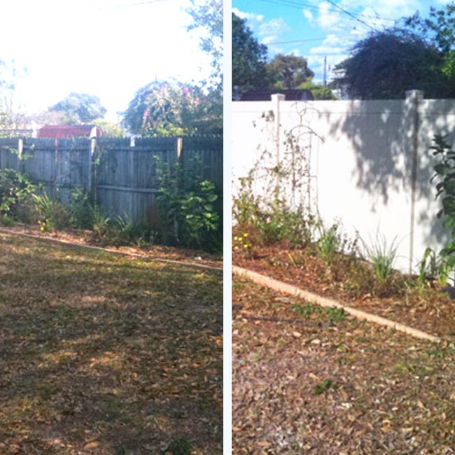 Landscaping Clearing Before, During & After