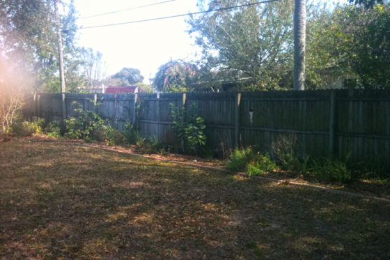 New Fence & Planter Kenneth City